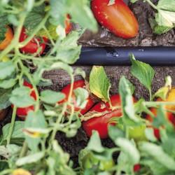 Garten Tropfbewässerung